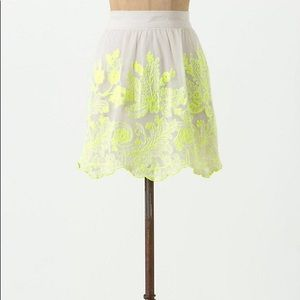 Anthro mesh embroidered skirt